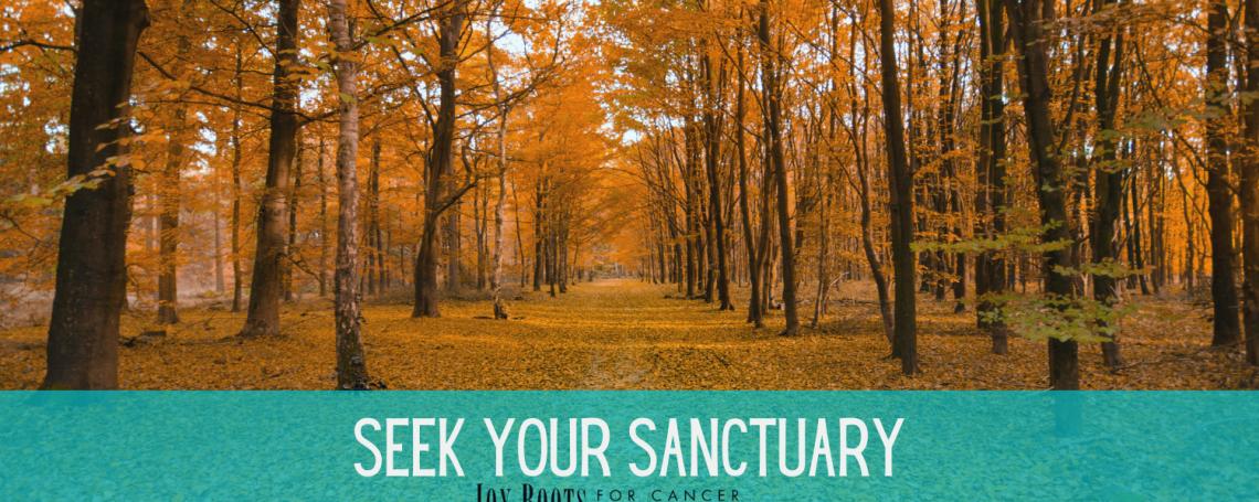 Seek Your Sanctuary