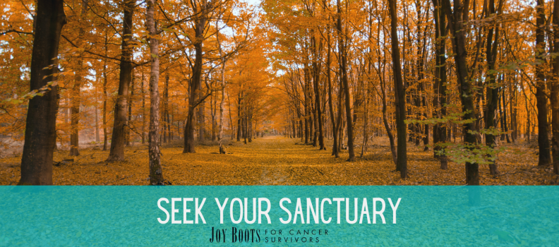 Seek Your Sanctuary